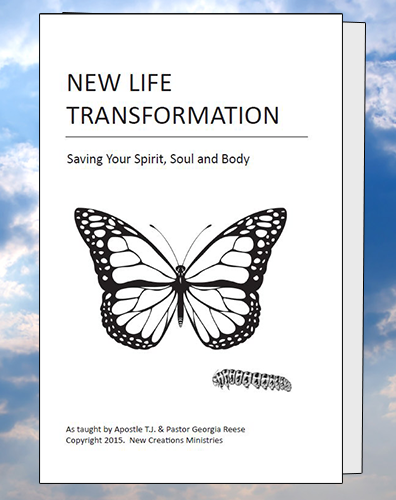 New Life Transformation Outline